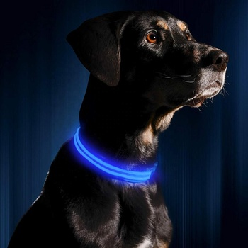 Hot Selling LED Dog Collars Flashing Light Pet Collar Adjustable USB Rechargeable Dog collar Pet Supplies