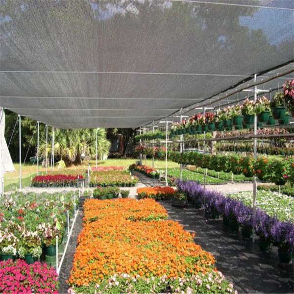 Shade Cloth Lowes For Greenhouse Swimming Pool Cover Pe Green Sun