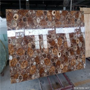Fossil Stone Petrified Wood for round or square countertop