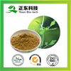 Spary Dried Bulk Store Black Cohosh Extract Triterpenoid Saponins 2.5% Powder for Tabletting