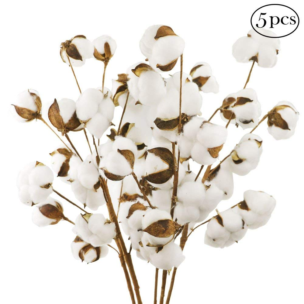 VGIA 5 Pack 10 Balls Per Stem 21 Inch Cotton Stems Farmhouse Style Display Filler Floral Decoration 5 Pack 10 Balls Per Stem