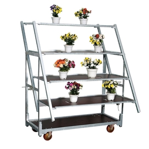 Movable Adjustable Chrome Wire Metal Flower/Plant Carts For Storage