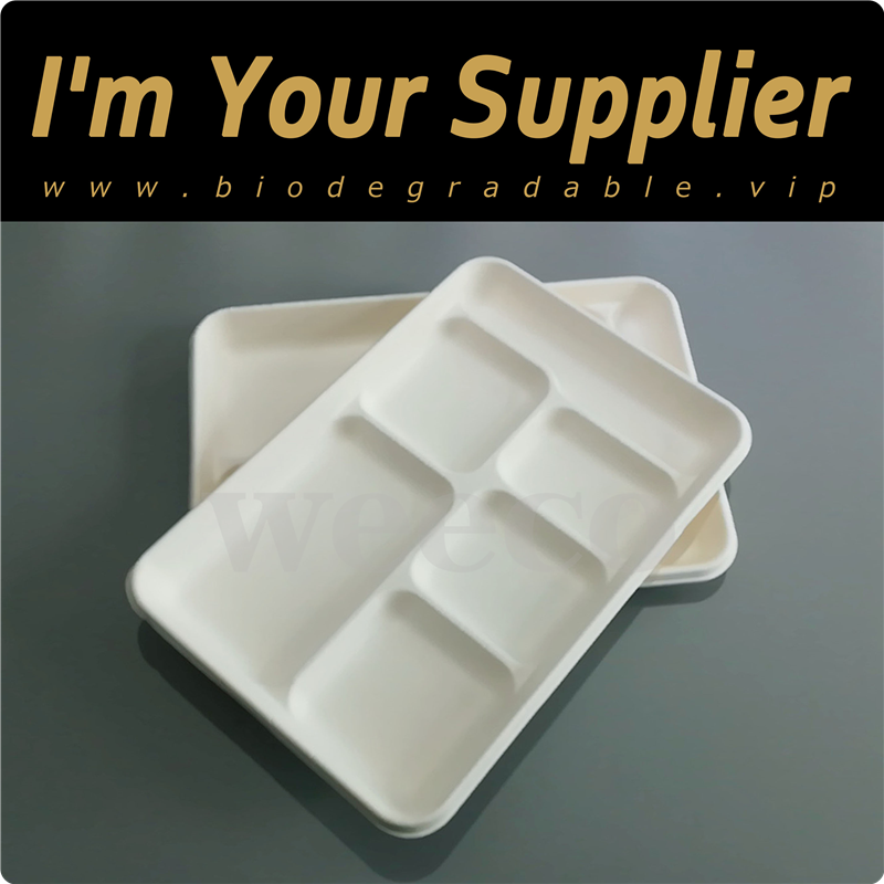 Natural plant fiber based packaging catering bagasse compostable paper biodegradable tray