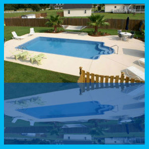 Specialist Steel Structure Products Building as Swimming Pool