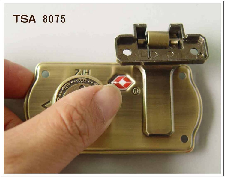 professionan manufacturer high end case lock, luggage hasp toggle latch lock