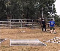 Livestock cattle panel / used horse fence panels / cheap galvanized horse fence