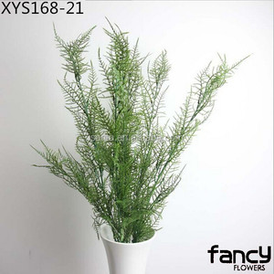 cheap wholesale artificial asparagus fern for wall decoration