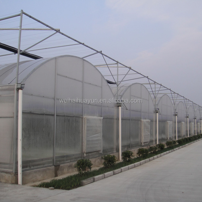 The Cheapest Agricultural Film Covered Multi Span Greenhouse
