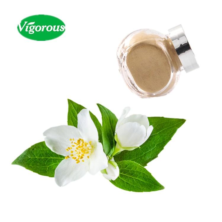 Healthy Tea Beverage Jasmine Green Tea Extract Powder - 4uTea | 4uTea.com