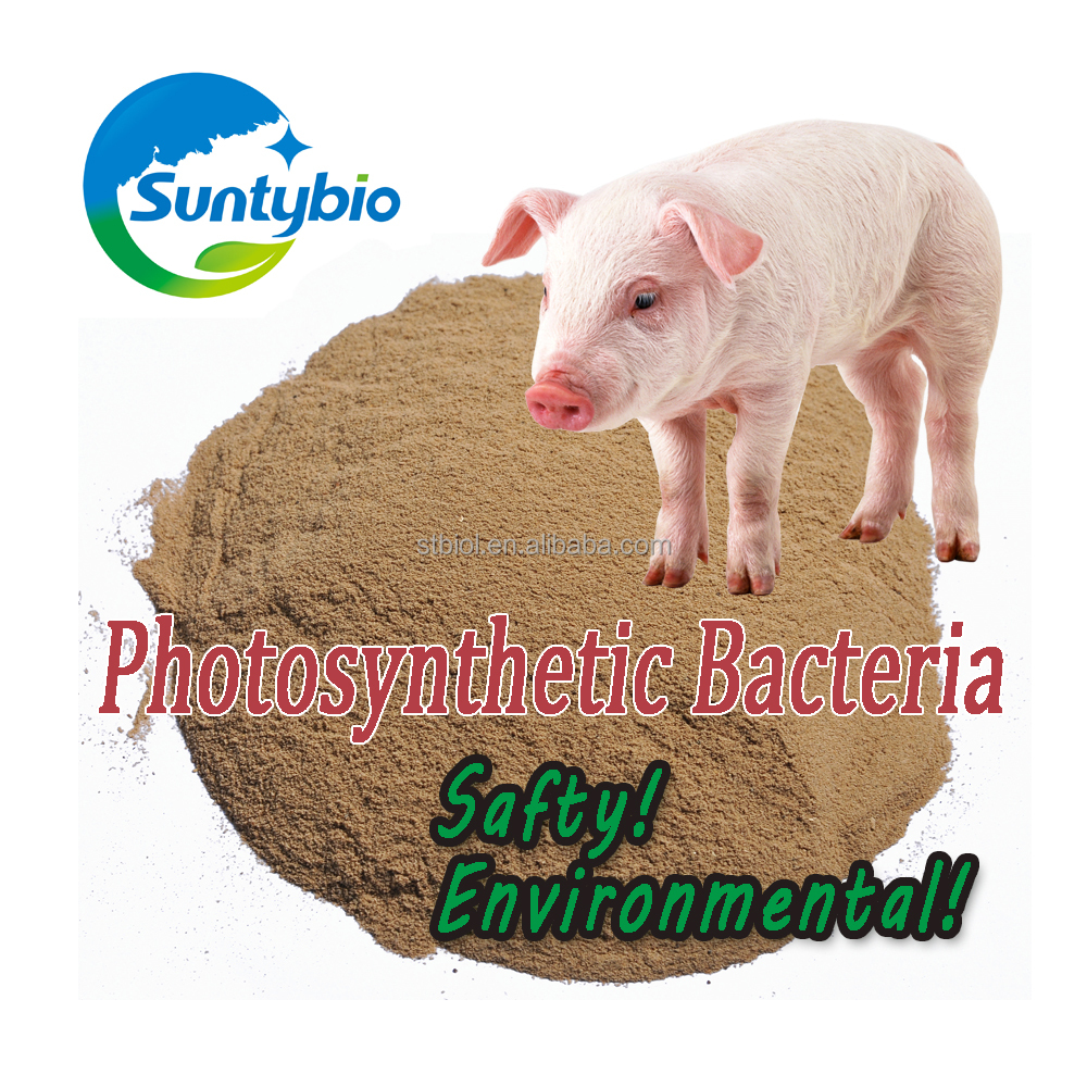 poultry feed aquaculture photosynthetic bacteria for shrimp