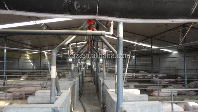 multi -span low price advanced automated pig slaughter house