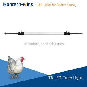 poultry led light dimmable 0-10V signal T5 /T6 DC48V light for cage chicken