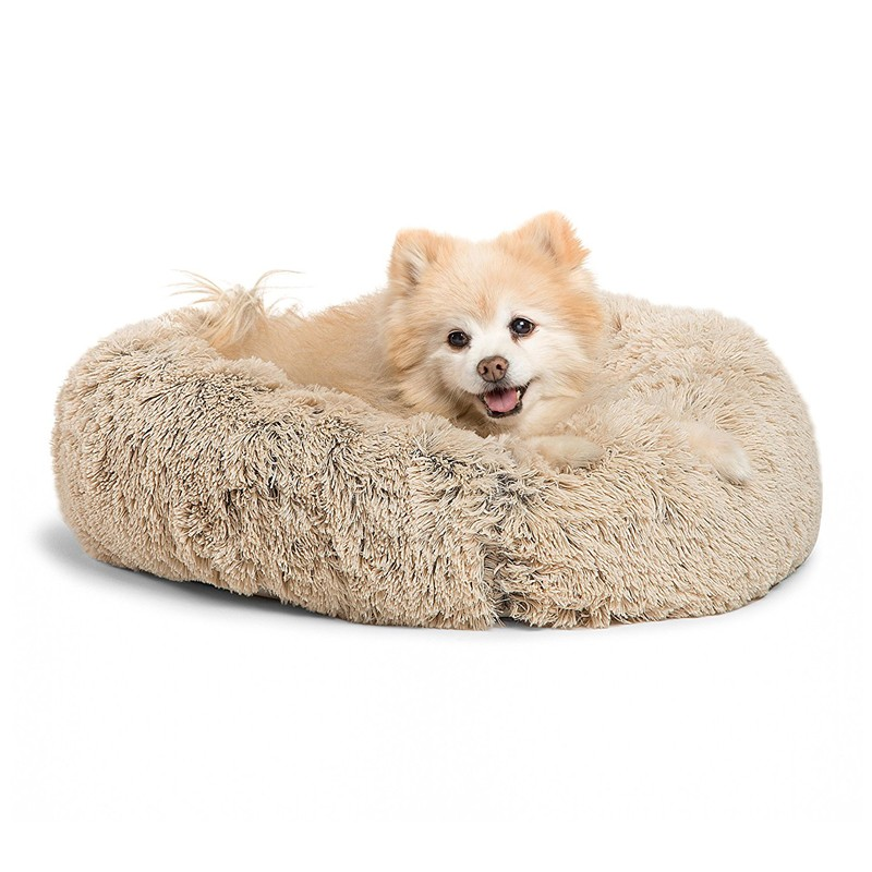 dog bed 6