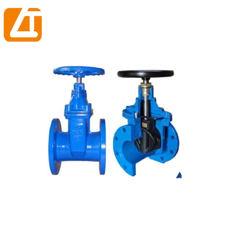 Made in China DIN Ductile Iron GGG50 22mm gate valve