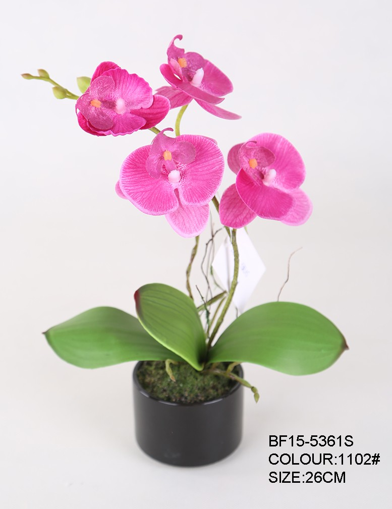 Artificial Orchid Flowers Pots, Orchid Plants for New Year Gift