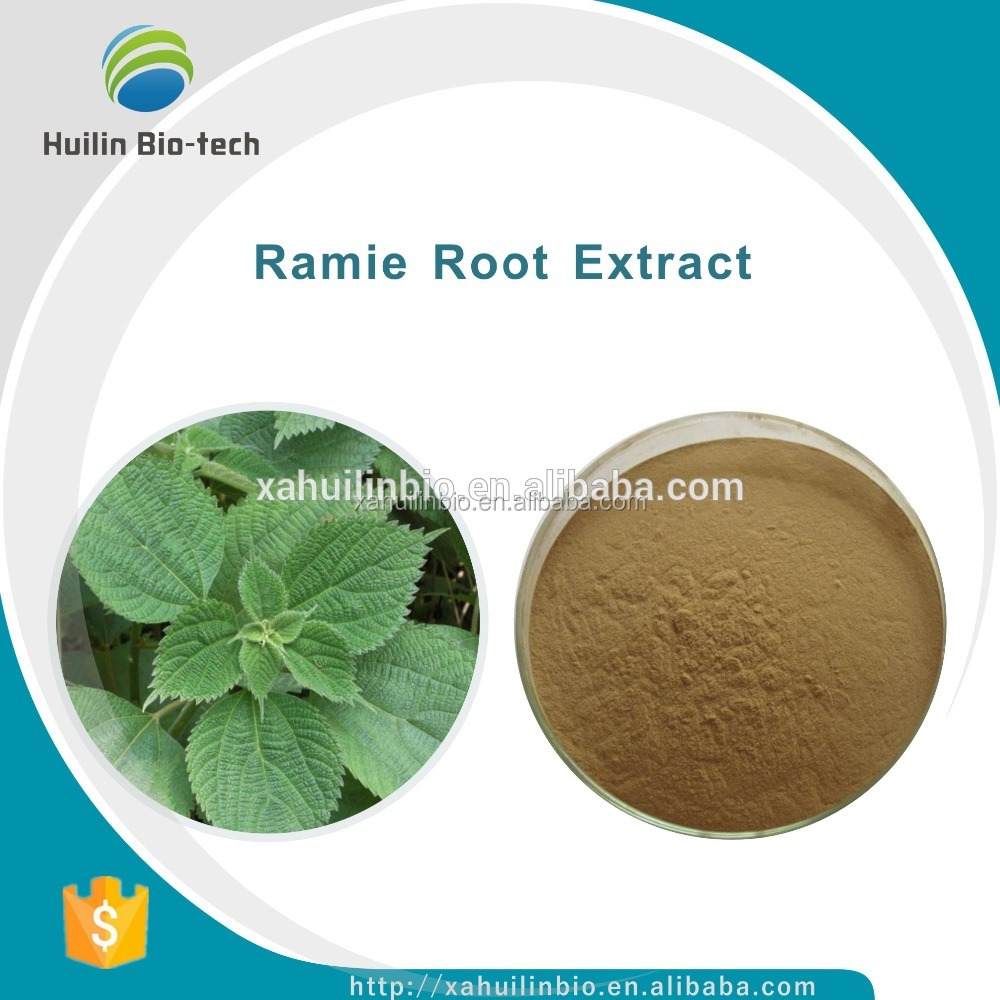 Ramie Root Extract Powder