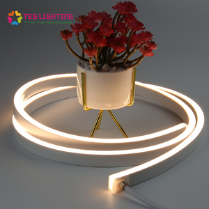 Reliable quality side view flexible pvc neon led lights for landscape lighting