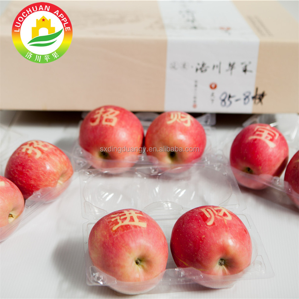 2017 New Ripe import fresh rose red Luochuan yantai fuji apple