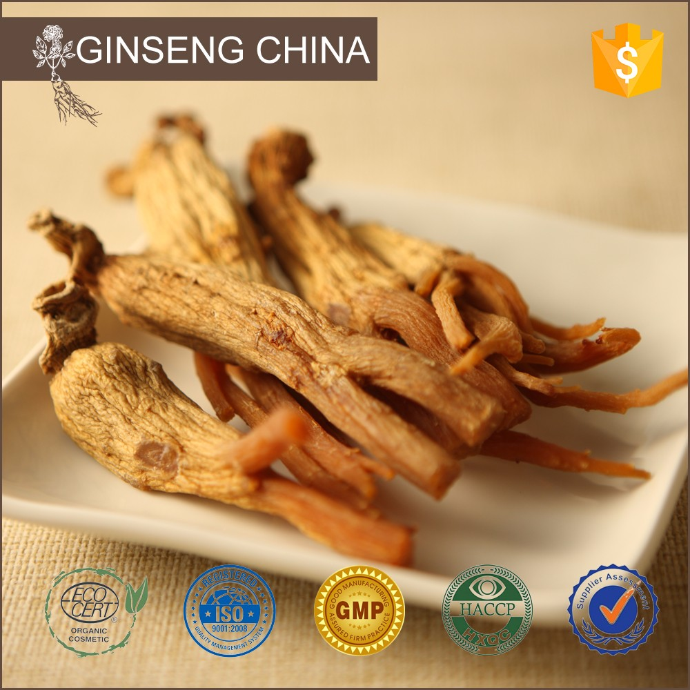 Chinese Root P.E. Red Panax Ginseng Extract