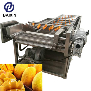 fruit/vegetable/apple/pear/mango washing/cleaning/processing/production machine/equipment/line from Binzhou