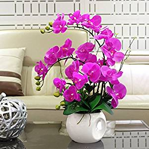 Nearly Natural Phalaenopsis Silk Orchid Flower Arrangement Artificial Flower Plants Home Wedding Decor Butterfly Orchid - Hot Pink