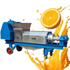 High Quality Electric Ginger Juice Extraction Machine/Ginger Extractor