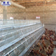big sale real factory A-Type 160 birds cold galvanized quail/chicken battery cage