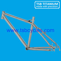 China parts 26er bicycle frame TSB-HSM0901