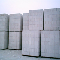 ALC autoclaved aerated concrete block