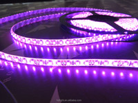 advertising light, good quality led light strip 5050 waterproof and aluminium profile