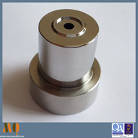 Precision HSS Coin Punch for Mold