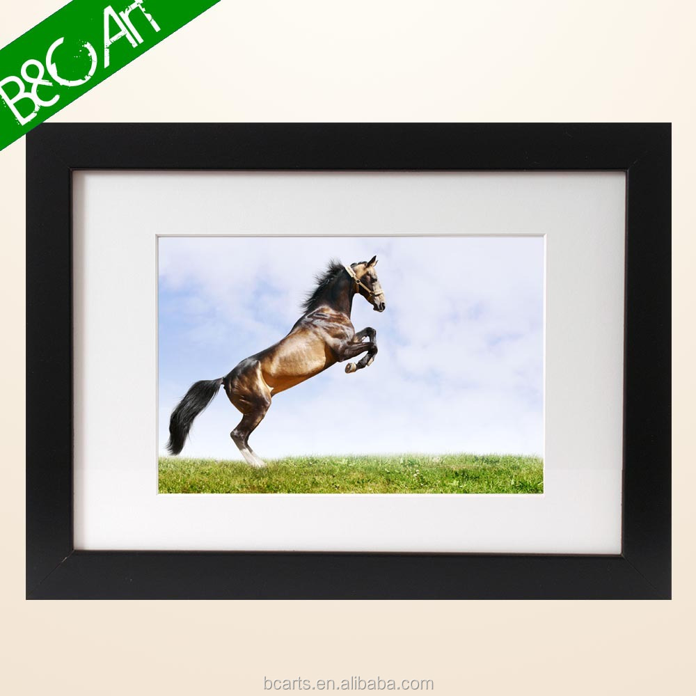 China supplier vivid artwork horse picture