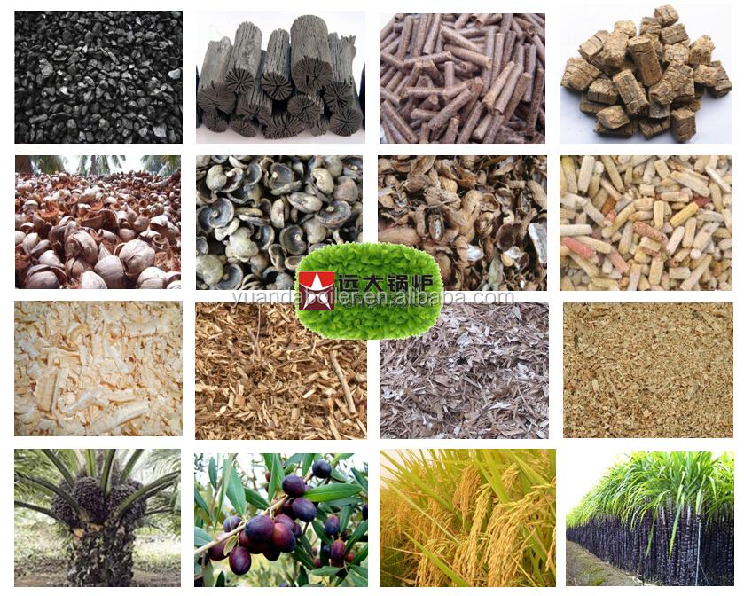 Oil Palm Fruit Shell Plam Fibers Palm Kernel Shells Boilers For ...