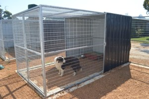 dog kennels/ dog cages china factory