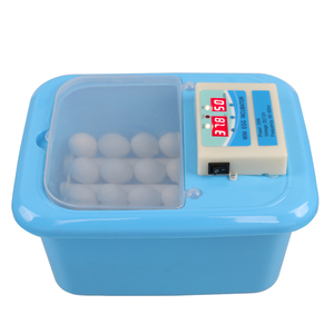 Top selling newly design full automatic mini egg incubator hatching 9eggs for sale