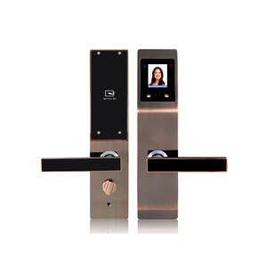 Biometric lock based Palm and face recognition door lock with IC card function