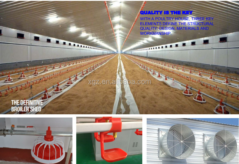 Professional Low Cost Free range Chicken farm house and Equipment