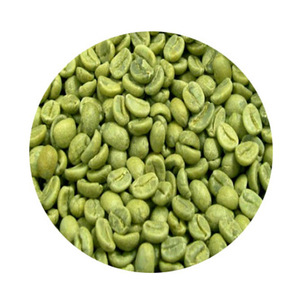 2019 new harvest Yunnan Grade AA raw Arabic green coffee beans