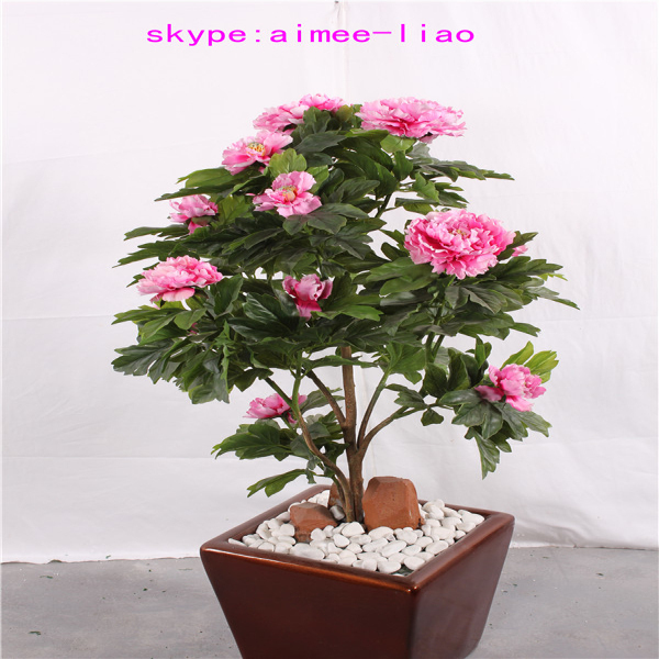 Q122503 Home Decoration Flower Plants Sale Cheap Small Bonsai