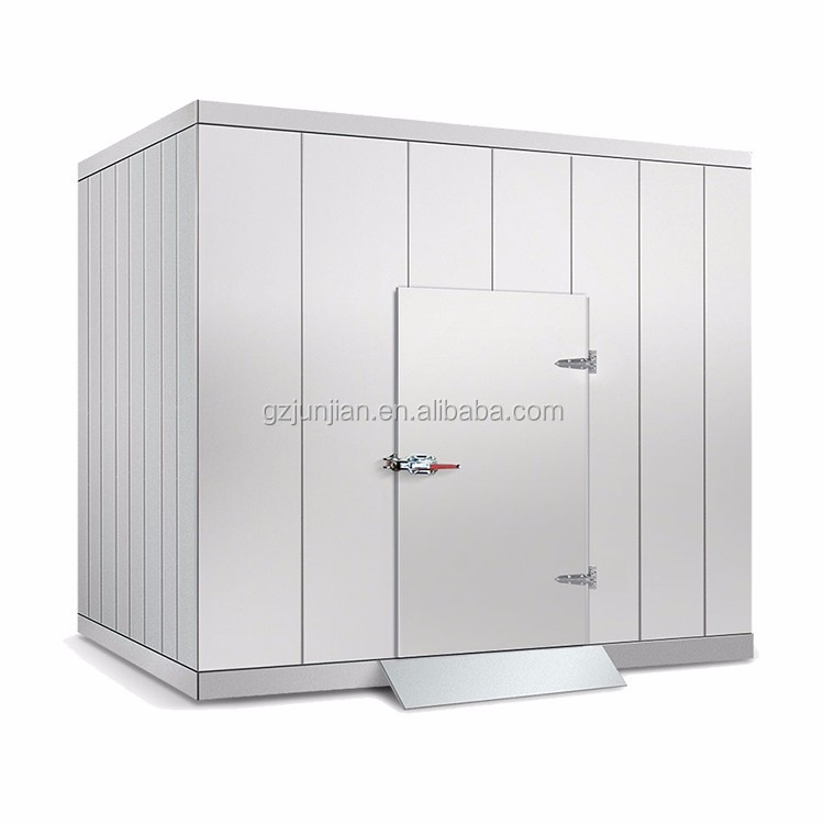 walk in freezer walk in chiller or freezer for meat vegetable fruit and fish