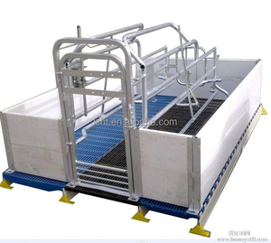 Double Farrowing Crate with pvc fence or Grill fence for piggery farming equipments