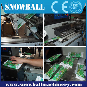 China original industral grade Automatic Ice Cream Packing System/Packing equipment