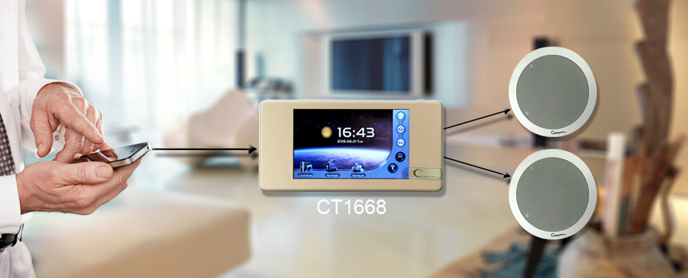 Ct1668 Wifi Bluetooth Mp3 Home Smart Music Player