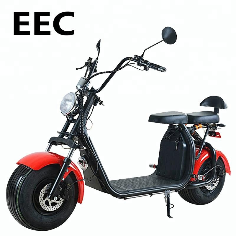 Citycoco 1000w 2018 new model 2 wheel fat tire electric scooter off road