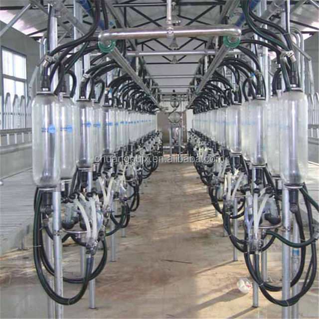 Automated Sheep Milking System For Dairy Industry - Buy Sheep Milking  System,Automated Sheep Milking System,Automatic Milking Systems Product on