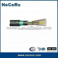 Top quality loose tube non metallic strength member armored cable GYFTY53