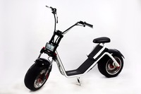 Fat Tire 2 Wheel Harley Electric Smart Drifting Scooter