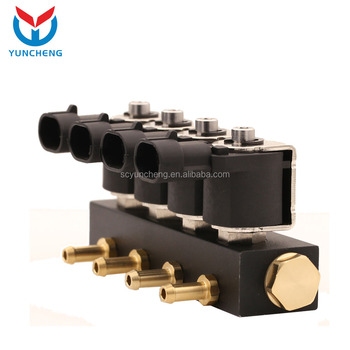 CNG/LPG Rail Injector Type cng/lpg Gas injector
