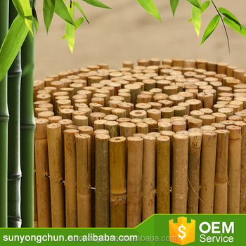 Decorative Bamboo Fencing Mini Cheap Of Bamboo Fence For Agriculture - Buy  Decorative Bamboo Fencing,Cheap Of Bamboo Fence,Decorative Mini Bamboo