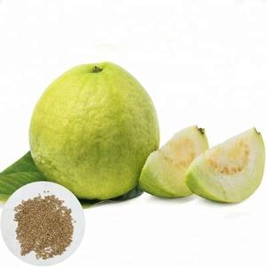 China guava plants wholesale 🇨🇳 - Alibaba